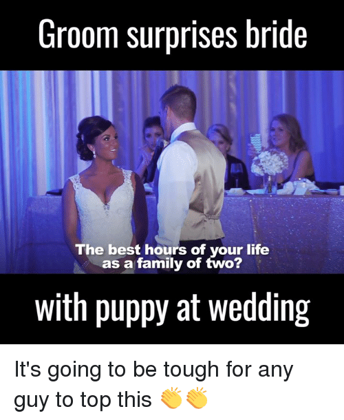 Dank, 🤖, and Top: Groom surprises bride  The best hours of your life  as a family of two?  with puppy at wedding It's going to be tough for any guy to top this 👏👏