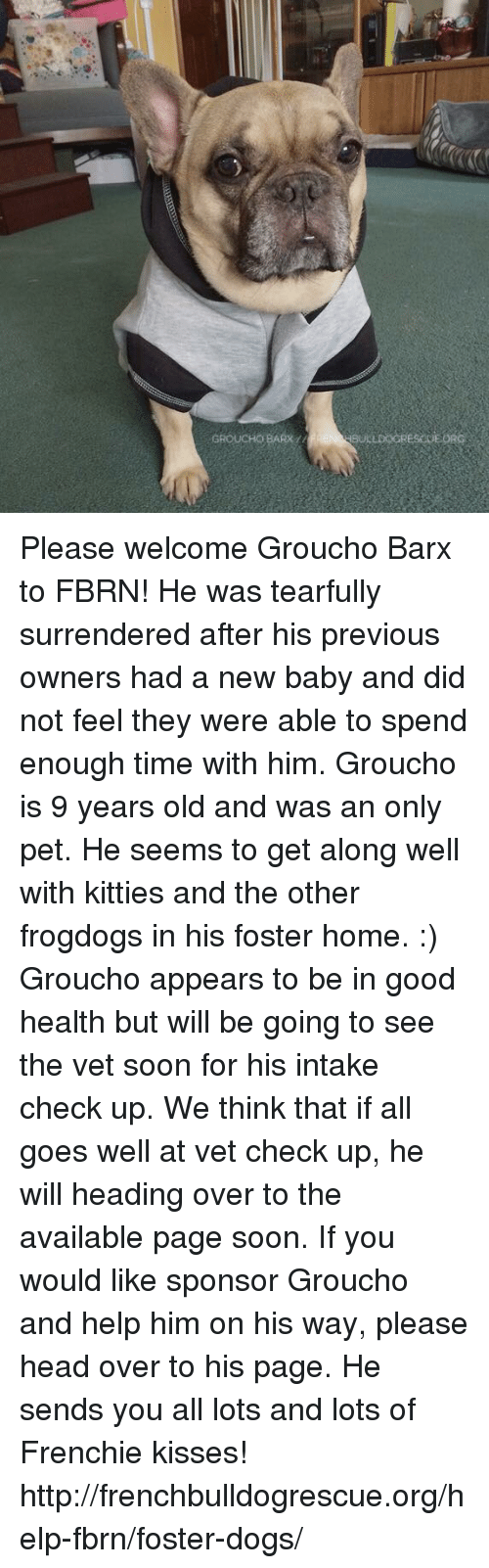 Surrend: GROUCHOBARx  BULLDOGRES GEORG Please welcome Groucho Barx to FBRN! He was tearfully surrendered after his previous owners had a new baby and did not feel they were able to spend enough time with him.   Groucho is 9 years old and was an only pet. He seems to get along well with kitties and the other frogdogs in his foster home. :)  Groucho appears to be in good health but will be going to see the vet soon for his intake check up. We think that if all goes well at vet check up, he will heading over to the available page soon. If you would like sponsor Groucho and help him on his way, please head over to his page. He sends you all lots and lots of Frenchie kisses!  http://frenchbulldogrescue.org/help-fbrn/foster-dogs/