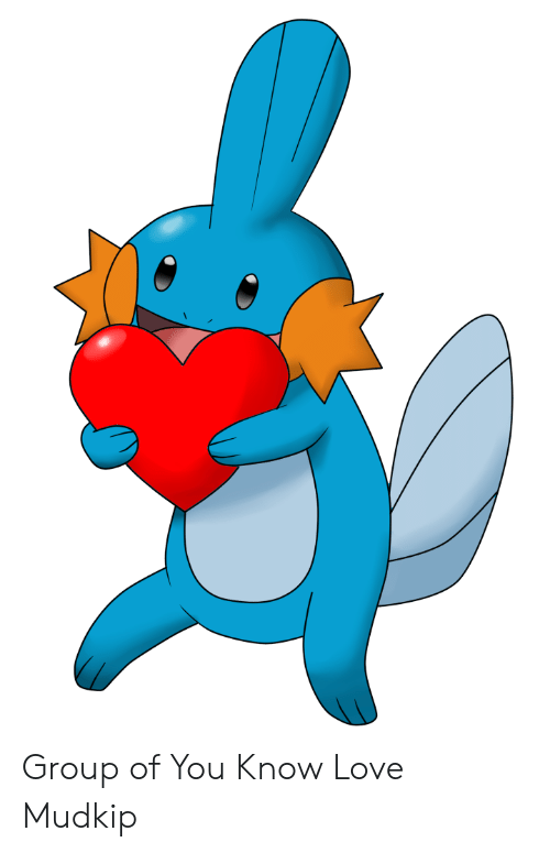 Know Your Meme Mudkip: Group of You Know Love Mudkip