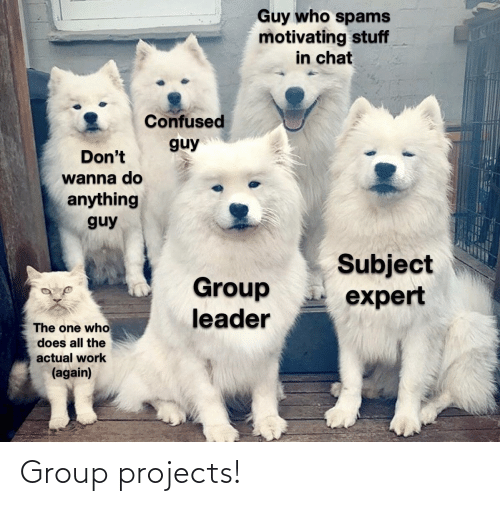 Group Projects: Group projects!