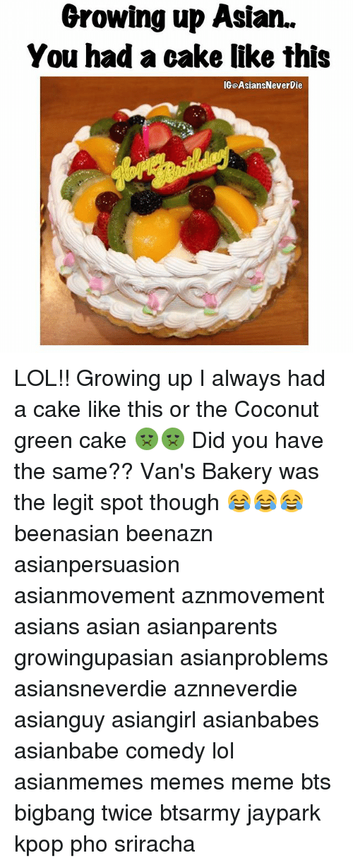 Asian, Growing Up, and Lol: Growing up Asian.  You had a cake like this  IGOAsiansNeverDie LOL!! Growing up I always had a cake like this or the Coconut green cake 🤢🤢 Did you have the same?? Van's Bakery was the legit spot though 😂😂😂 beenasian beenazn asianpersuasion asianmovement aznmovement asians asian asianparents growingupasian asianproblems asiansneverdie aznneverdie asianguy asiangirl asianbabes asianbabe comedy lol asianmemes memes meme bts bigbang twice btsarmy jaypark kpop pho sriracha