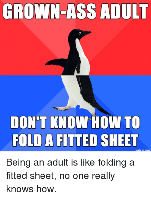 fold a fitted sheet: GROWN-ASS ADULT  DON'T KNOW HOW TO  FOLD A FITTED SHEET  made on imgur Being an adult is like folding a fitted sheet, no one really knows how.
