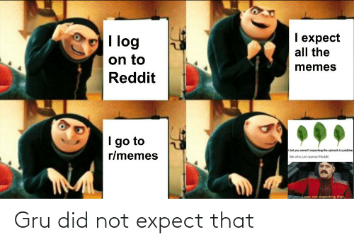 Gru: Gru did not expect that
