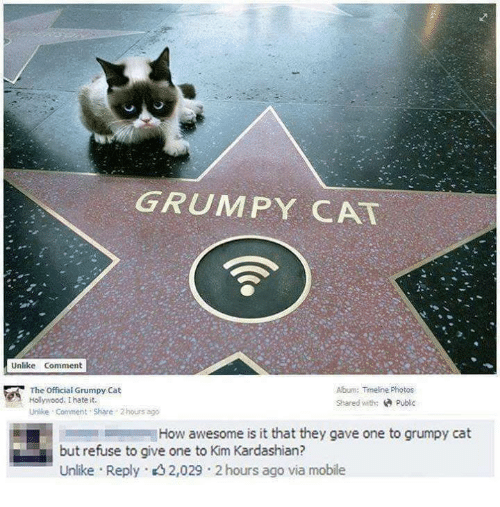 Cats, Kardashians, and Kim Kardashian: GRUMPY CAT  Unlike Comment  The official Grumpy Cat  Album: Timeline Photos  Hollywood. I hate it.  Shared with:  Public  Unlike Comment share 2 hours ago  How awesome is it that they gave one to grumpy cat  but refuse to give one to Kim Kardashian?  Unlike Reply. 2,029 2 ago via mobile  hours