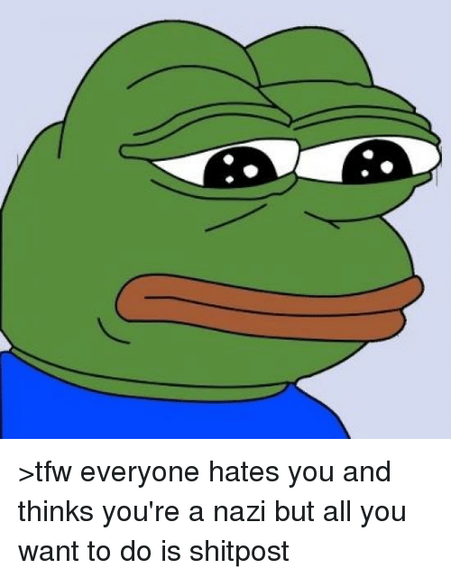 Tfw, Dank Memes, and Shitposting: >tfw everyone hates you and thinks you're a nazi but all you want to do is shitpost