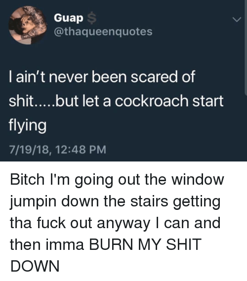 Bitch, Shit, and Fuck: Guap  @thaqueenquotes  I ain't never been scared of  flying  7/19/18, 12:48 PM Bitch I'm going out the window jumpin down the stairs getting tha fuck out anyway I can and then imma BURN MY SHIT DOWN
