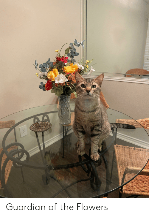 Guardian: Guardian of the Flowers
