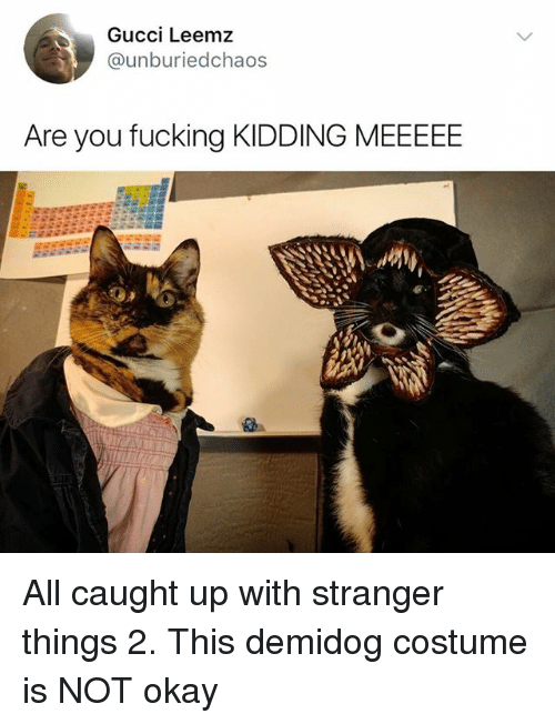 Are You Fucking Kidding: Gucci Leemz  @unburiedchaos  Are you fucking KIDDING MEEEEE All caught up with stranger things 2. This demidog costume is NOT okay