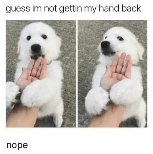 Memes, Guess, and Nope: guess im not gettin my hand back nope