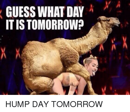 Hump Day, Memes, and 🤖: GUESS WHAT DAY  ITIS TOMORROW?  A HUMP DAY TOMORROW