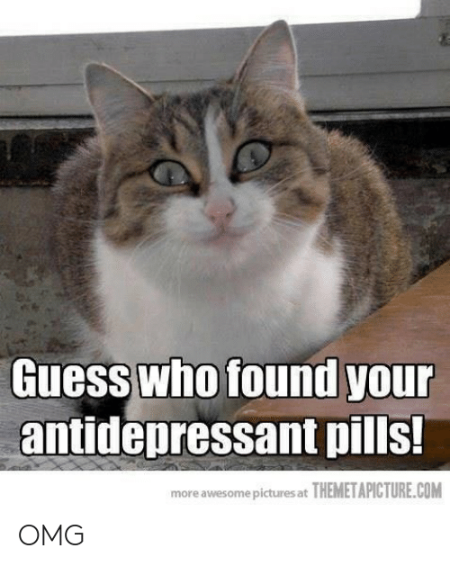 Antidepressant: Guess who found you  antidepressant pills!  more awesome pictures at THEMETAPICTURE.COM OMG