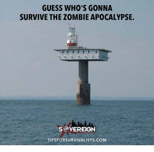 The Zombie Apocalypse: GUESS WHO'S GONNA  SURVIVE THE ZOMBIE APOCALYPSE.  S VEREIGN  TIPSFORSURVIVALISTS.COM