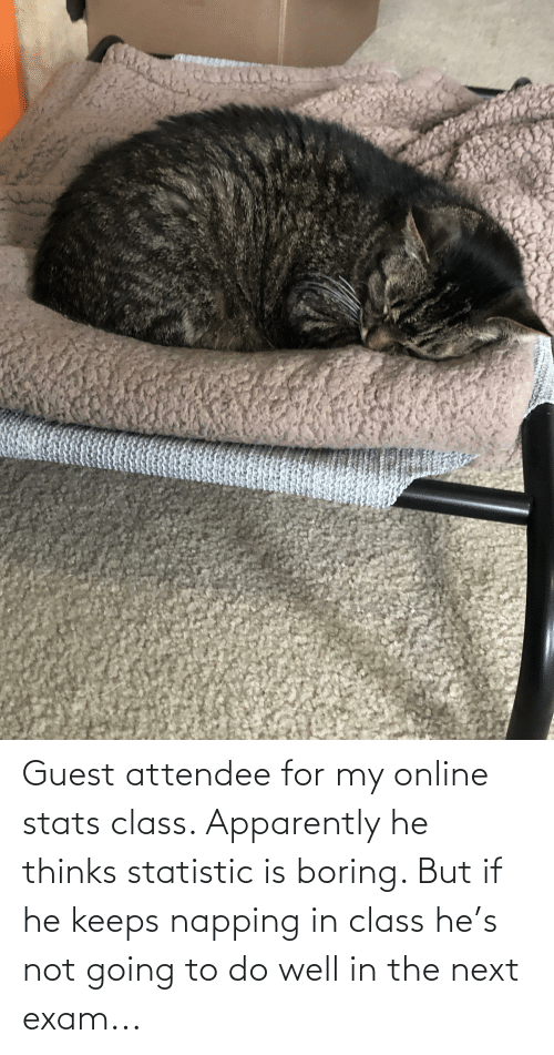 Guest: Guest attendee for my online stats class. Apparently he thinks statistic is boring. But if he keeps napping in class he's not going to do well in the next exam...