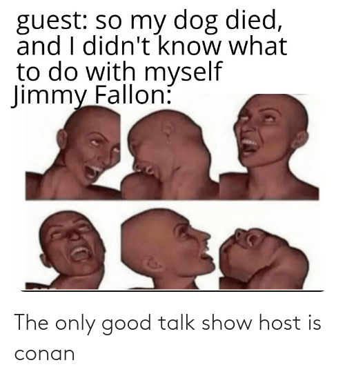 Jimmy Fallon: guest: so my dog died,  and I didn't know what  to do with myself  Jimmy Fallon: The only good talk show host is conan