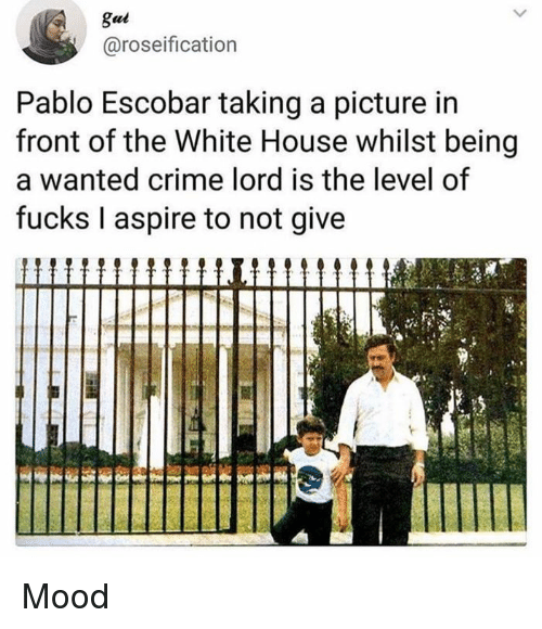 Crime, Memes, and Mood: gui  @roseification  Pablo Escobar taking a picture in  front of the White House whilst being  a wanted crime lord is the level of  fucks I aspire to not give Mood