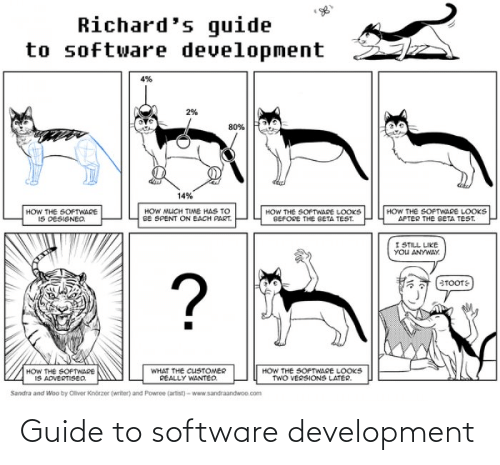 software: Guide to software development