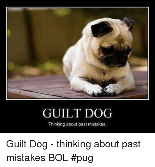 Memes, Mistakes, and 🤖: GUILT DOG  Thinking about past mistakes Guilt Dog - thinking about past mistakes    BOL  #pug