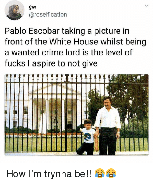 Crime, Memes, and Pablo Escobar: gul  @roseification  Pablo Escobar taking a picture in  front of the White House whilst being  a wanted crime lord is the level of  fucks I aspire to not give  Ii How I'm trynna be!! 😂😂