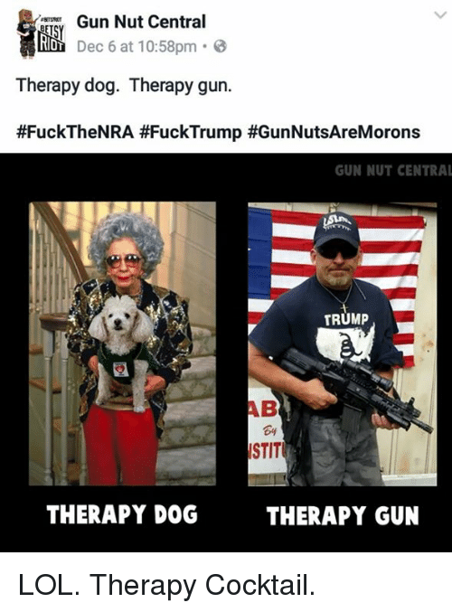 Memes, 🤖, and Nra: Gun Nut Central  Dec 6 at 10:58pm  o  RIDT  Therapy dog. Therapy gun.  #Fuck The NRA #Fuck Trump #GunNutsAreMorons  GUN NUT CENTRAL  TRUMP  ISTIT  THERAPY DOG  THERAPY GUN LOL. Therapy Cocktail.