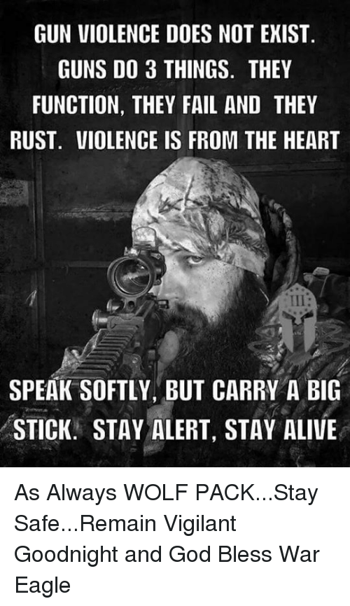 Memes, Stay Alert, and Eagle: GUN VIOLENCE DOES NOT EXIST.  GUNS DO 3 THINGS. THEY  FUNCTION, THEY FAIL AND THEY  RUST. VIOLENCE IS FROM THE HEART  SPEAK SOFTLY, BUT CARRY A BIG  STICK. STAY ALERT, STAY ALIVE As Always WOLF PACK...Stay Safe...Remain Vigilant  Goodnight and God Bless                                     War Eagle