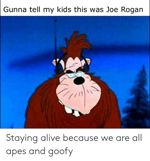 staying alive: Gunna tell my kids this was Joe Rogan Staying alive because we are all apes and goofy