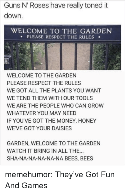 Guns, Money, and Respect: Guns N' Roses have really toned it  down.  WELCOME TO THE GARDEN  PLEASE RESPECT THE RuLES .  WELCOME TO THE GARDEN  PLEASE RESPECT THE RULES  WE GOT ALL THE PLANTS YOU WANT  WE TEND THEM WITH OUR TOOLS  WE ARE THE PEOPLE WHO CAN GROW  WHATEVER YOU MAY NEED  IF YOU'VE GOT THE MONEY, HONEY  WE'VE GOT YOUR DAISIES  GARDEN, WELCOME TO THE GARDEN  WATCH IT BRING IN ALL THE..  SHA-NA-NA-NA-NA-NA BEES, BEES memehumor:  They've Got Fun And Games
