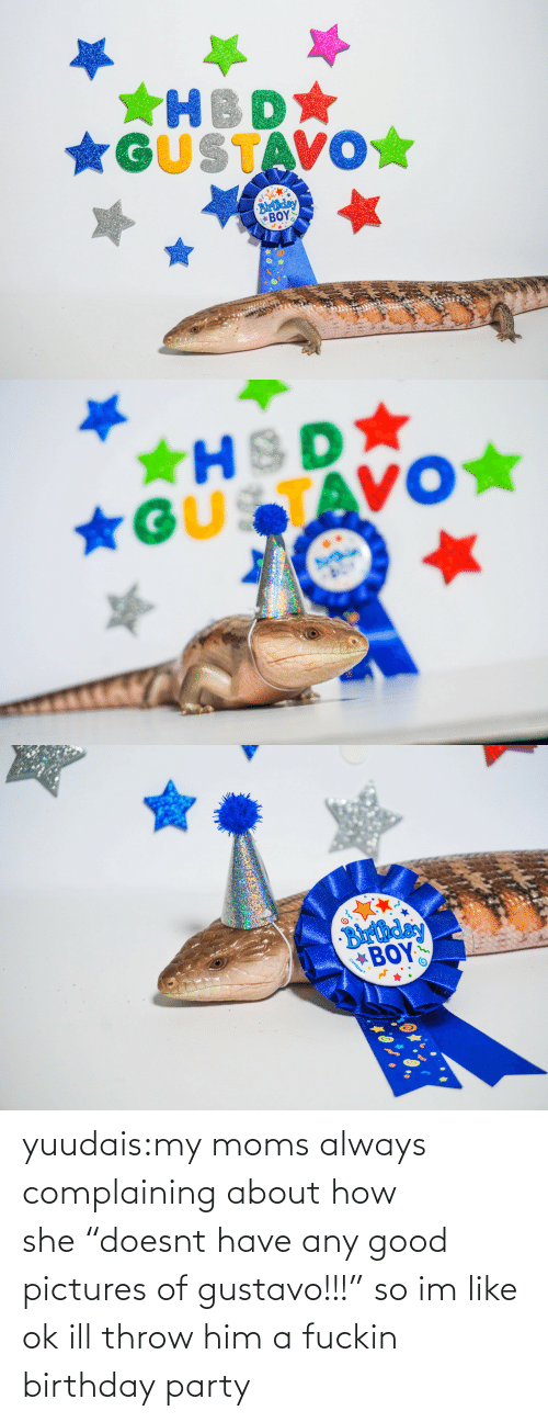 """pictures of: *GUSTAVO☆  Blrthday  ΒΟΥΣ   ★HSD  *GUSTAVO★   Barthday  BOY  Gunique yuudais:my moms always complaining about how she""""doesnt have any good pictures of gustavo!!!"""" so im like ok ill throw him a fuckin birthday party"""