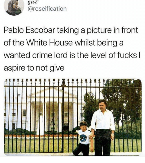 Crime, Pablo Escobar, and White House: gut  @roseification  Pablo Escobar taking a picture in front  of the White House whilst being a  wanted crime lord is the level of fucks l  aspire to not give