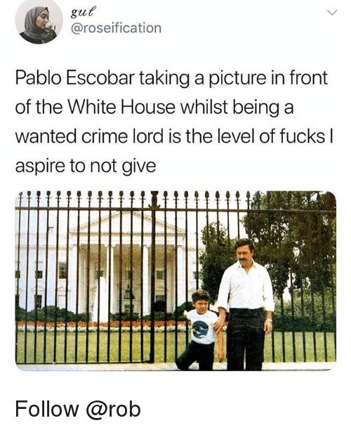 Crime, Pablo Escobar, and White House: gut  @roseification  Pablo Escobar taking a picture in front  of the White House whilst being a  wanted crime lord is the level of fucks l  aspire to not give Follow @rob
