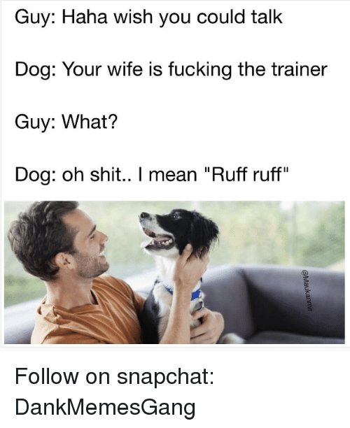 """talking dogs: Guy: Haha wish you could talk  Dog: Your wife is fucking the trainer  Guy: What?  Dog: oh shit.. I mean """"Ruff ruff"""" Follow on snapchat: DankMemesGang"""