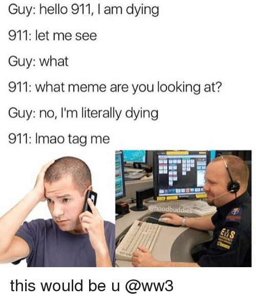 What Meme: Guy: hello 911, I am dying  911: let me see  Guy: what  911: what meme are you looking at?  Guy: no, I'm literally dying  911: Imao tag me this would be u @ww3