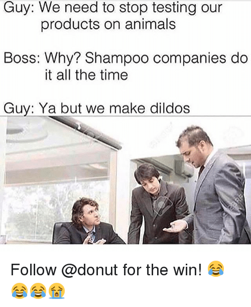 Animals, Memes, and Time: Guy: We need to stop testing our  products on animals  Boss: Why? Shampoo companies do  it all the time  Guy: Ya but we make dildos Follow @donut for the win! 😂😂😂😭