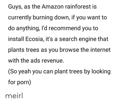 So Yeah: Guys, as the Amazon rainforest is  currently burning down, if you want to  do anything, I'd recommend you to  install Ecosia, it's a search engine that  plants trees as you browse the internet  with the ads revenue.  (So yeah you can plant trees by looking  for porn) meirl