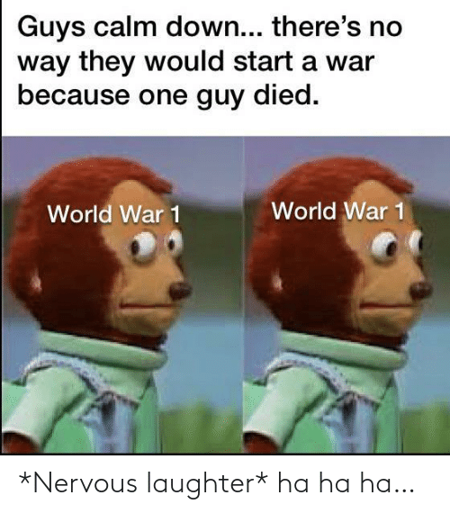 start a: Guys calm down... there's no  way they would start a war  because one guy died.  World War 1  World War 1 *Nervous laughter* ha ha ha…