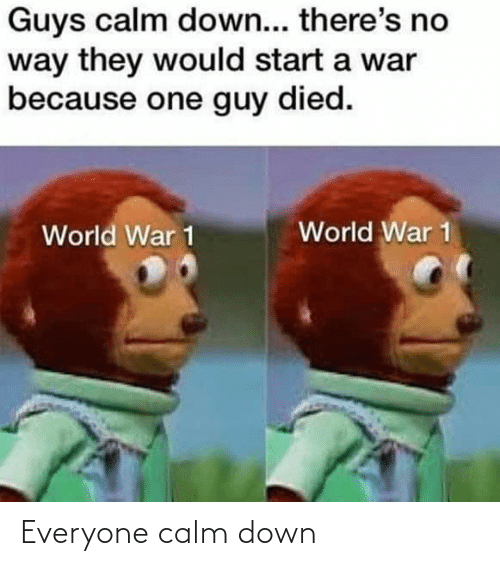 world war 1: Guys calm down... there's no  way they would start a war  because one guy died.  World War 1  World War 1 Everyone calm down