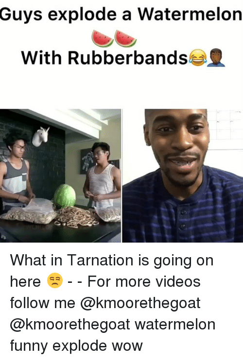 What In Tarnation: Guys explode a Watermelon  With Rubberbands What in Tarnation is going on here 😒 - - For more videos follow me @kmoorethegoat @kmoorethegoat watermelon funny explode wow