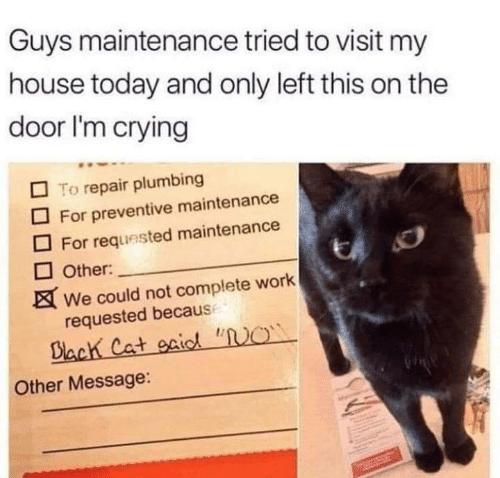 """Becaus: Guys maintenance tried to visit my  house today and only left this on the  door I'm crying  To repair plumbing  For preventive maintenance  For requested maintenance  Other:  We could not complete work  requested becaus  Biach Cat gaic """"O  Other Message:"""