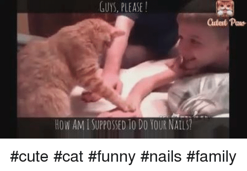 Funny Meme Nails : 🔥 25 best memes about funny nails funny nails memes
