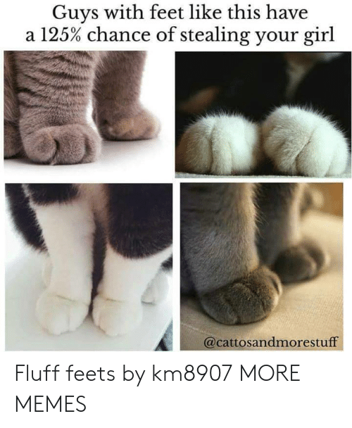 feets: Guys with feet like this have  a 125% chance of stealing your girl  @cattosandmorestuff Fluff feets by km8907 MORE MEMES
