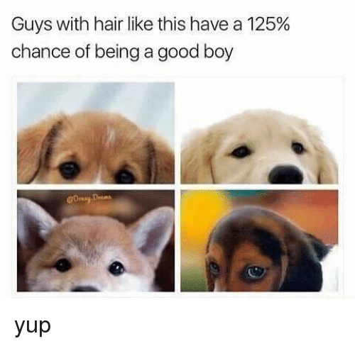 Memes, Good, and Hair: Guys with hair like this have a 125%  chance of being a good boy yup