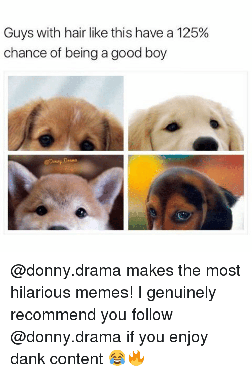 Memes, Content, and Contentment: Guys with hair like this have a 125%  chance of being a good boy @donny.drama makes the most hilarious memes! I genuinely recommend you follow @donny.drama if you enjoy dank content 😂🔥