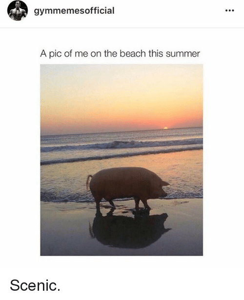 SIZZLE: gymmemes official  A pic of me on the beach this summer Scenic.