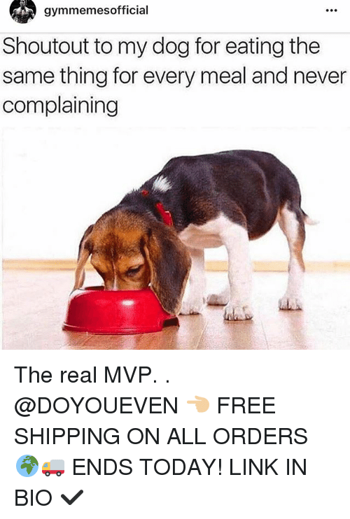 Gym, Linked In, and Mvp: gymmemesofficial  Shoutout to my dog for eating the  same thing for every meal and never  complaining The real MVP. . @DOYOUEVEN 👈🏼 FREE SHIPPING ON ALL ORDERS 🌍🚚 ENDS TODAY! LINK IN BIO ✔