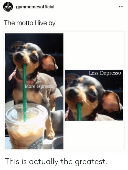 motto: gymmemesofficial  The motto I live by  Less Depresso  ore espresso This is actually the greatest.