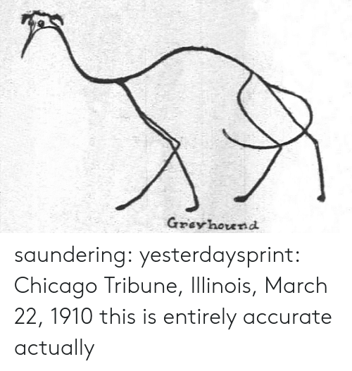 chicago tribune: Gzey hound saundering: yesterdaysprint:   Chicago Tribune, Illinois, March 22, 1910  this is entirely accurate actually