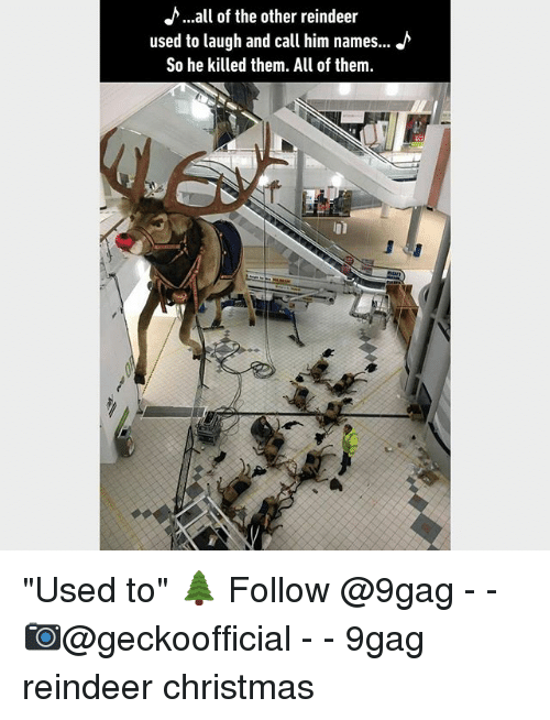 "9gag, Christmas, and Memes: h...all of the other reindeer  used to laugh and call him names...  So he killed them. All of them ""Used to"" 🌲 Follow @9gag - - 📷@geckoofficial - - 9gag reindeer christmas"