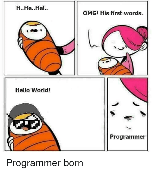 His First Words: H..He.. Hel..  OMG! His first words.  Hello World!  Programmer Programmer born
