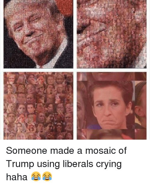 The Analytic Impossibility of Globalism Until Value Ontology Is Implemented as All-Law (2) - Page 4 H-someone-made-a-mosaic-of-trump-using-liberals-crying-6732815