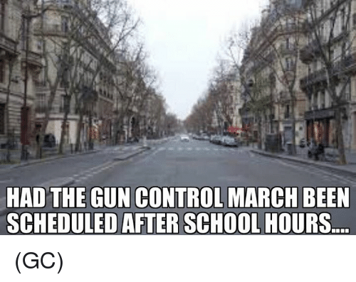 Memes, School, and Control: HAD THE GUN CONTROL MARCH BEEN  SCHEDULED AFTER SCHOOL HOURS (GC)