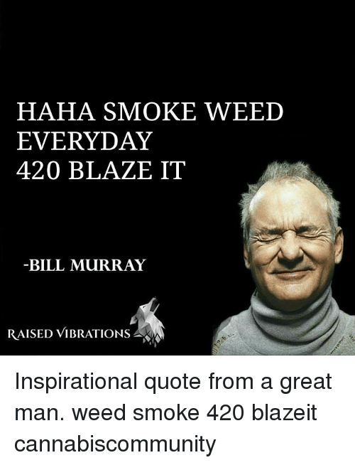 Memes, Smoke Weed Everyday, and Bill Murray: HAHA SMOKE WEED  EVERYDAY  420 BLAZE IT  BILL MURRAY  RAISED VIBRATIONS Inspirational quote from a great man. weed smoke 420 blazeit cannabiscommunity